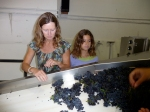 Kathryn and Hannah sorting Gap's Crown Pinot
