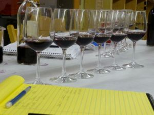 tasting and blending the Pinot clones